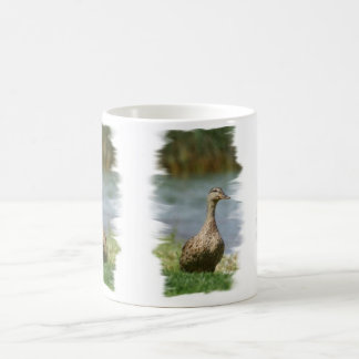 Duck 01  DRINKWARE 8.31x3_bev Coffee Mug