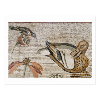 Duck and bird, Nile mosaic, House of the Faun Post Cards
