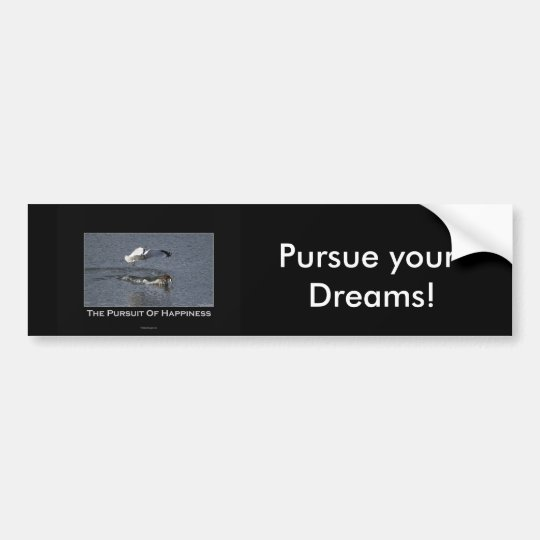 Duck and Gull Gifts Bumper Sticker