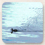 Duck and Ripples Coaster