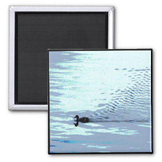 Duck and Ripples Refrigerator Magnet