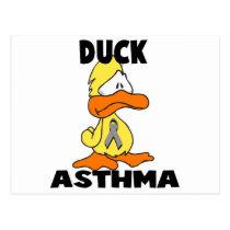 Duck Asthma Postcard