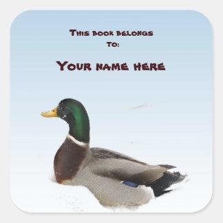 Duck Bookplate Square Sticker
