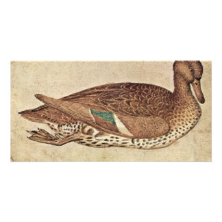 Duck By Pisanello (Best Quality) Photo Greeting Card