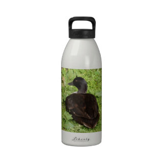 Duck By The Pond Drinking Bottle