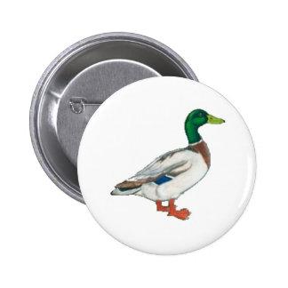 Duck Cartoon Design Pinback Button