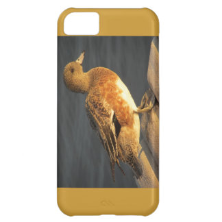 Duck iPhone 5C Cover