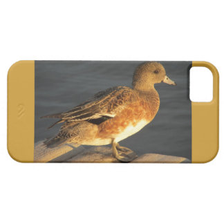 Duck iPhone 5 Covers