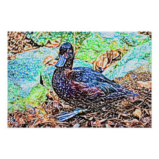 duck colored pencil look bird poster