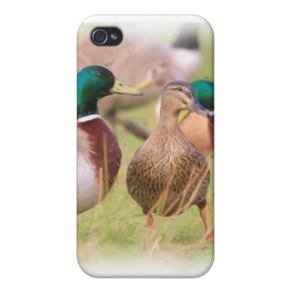 Duck Cover For iPhone 4