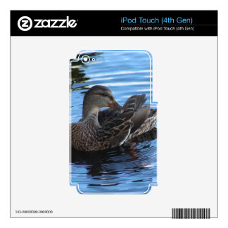 Duck Decal For iPod Touch 4G