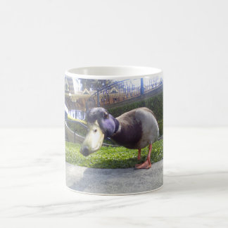 """Duck Encounter"" coffee mug"
