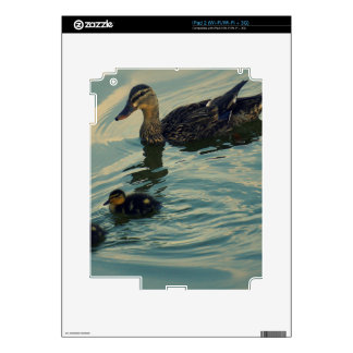 Duck Family Decal For iPad 2