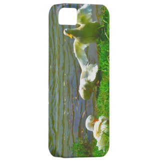 Duck Family iPhone SE/5/5s Case