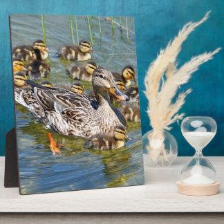 Duck Family Plaque