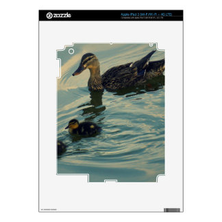 Duck Family Skin For iPad 3