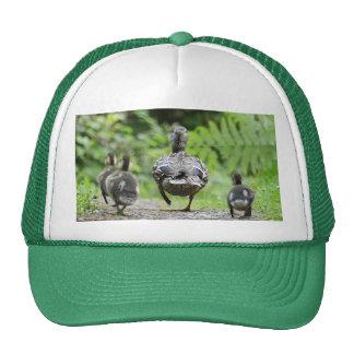 Duck Family Trucker Hat