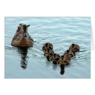 Duck Formation Stationery Note Card