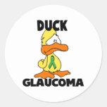 Duck Glaucoma Round Stickers