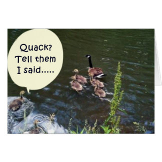 DUCK HUMOR GROUP BIRTHDAY CARD FOR ALL