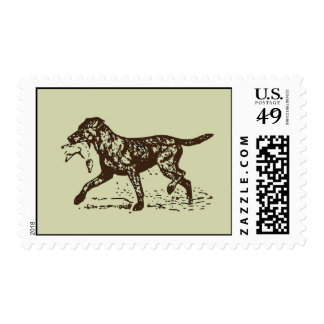 Duck Hunting Retriever Postage Stamp