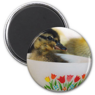 Duck in a Teacup 2 Inch Round Magnet