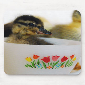 Duck in a Teacup Mousepads