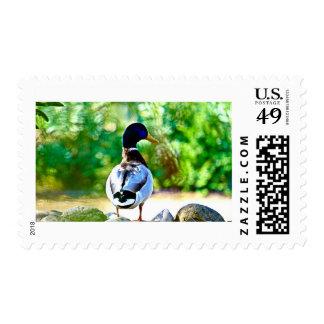Duck in fantasy garden postage stamp
