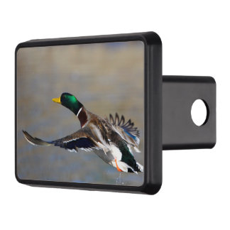 duck in flight tow hitch cover