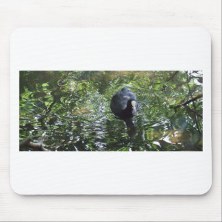 Duck In Green Soup Mouse Pad