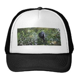 Duck In Green Soup Trucker Hat