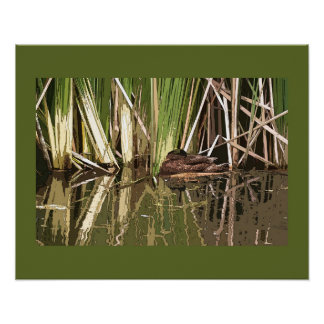 Duck in Pond Print