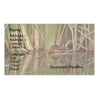 Duck in Reeds Business Card