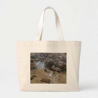 Duck in Shallows Bag