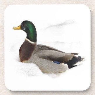 Duck in Snow Drink Coaster