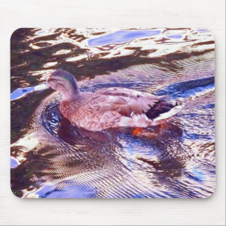 Duck in the golden pond mouse pad