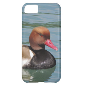 Duck in The Water Cover For iPhone 5C