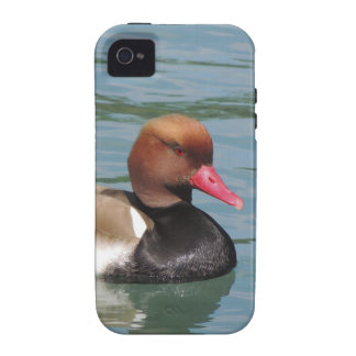 Duck in The Water Case For The iPhone 4