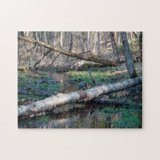 Duck In The Woods 11x14 Photo Puzzle with Gift Box