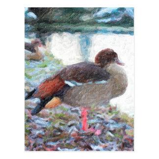 Duck Lake Oil Paintig Post Card