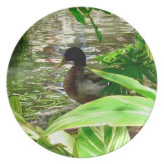 Duck Melamine Plate