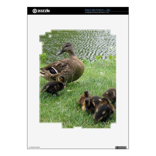 Duck mom and ducklings iPad 2 skin