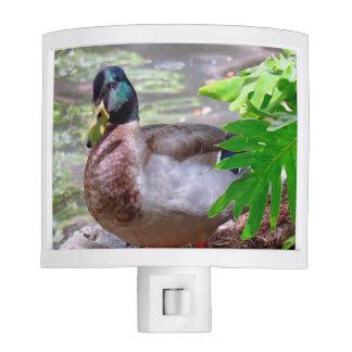 Duck Night Light
