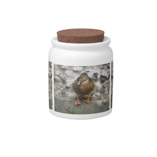 Duck on a Wall Candy Jar