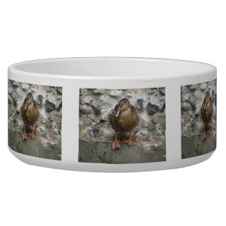 Duck on a Wall Pet Bowl