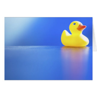 Duck on Blue Card