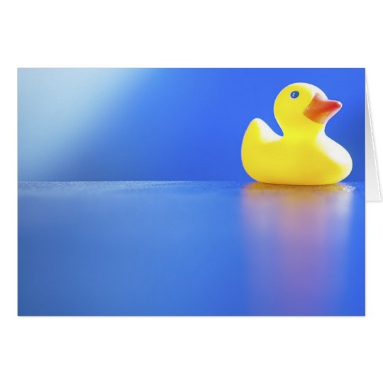 Duck on Blue Card