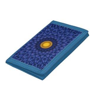 Duck on blue kaleidoscope...