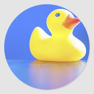 Duck on Blue Stickers