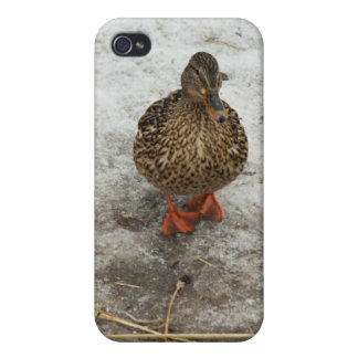 Duck on ice cases for iPhone 4